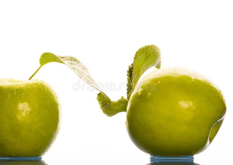 Download Pommes image stock. Image du propreté, repas, saveur, couleur - 2130191