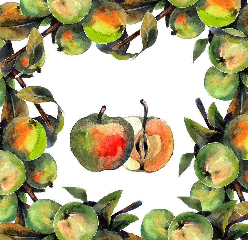 pommes illustration libre de droits