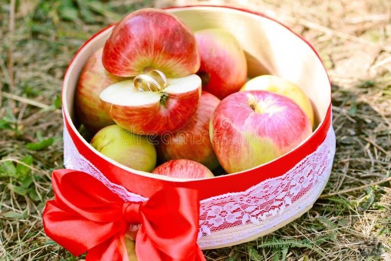 Pommes avec amour photo libre de droits