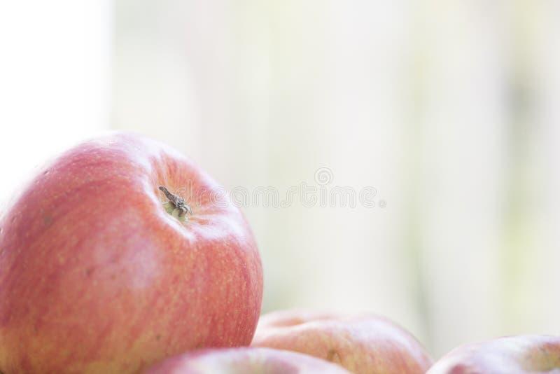 Pommes d'automne un jour ensoleillé photos stock
