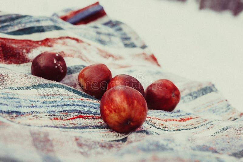 Pommes dans la neige photo stock
