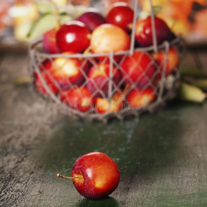 Pommes dans le panier photos libres de droits