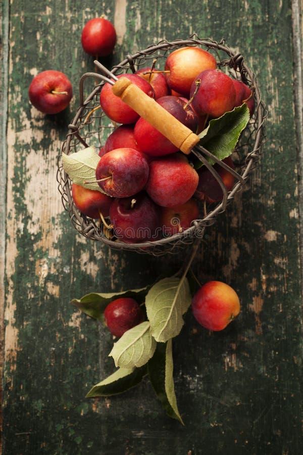 Pommes dans le panier image libre de droits