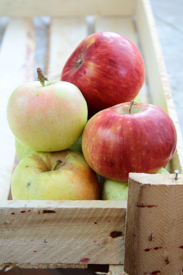 Pommes dans un cadre images stock