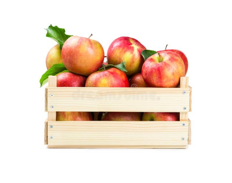 Pommes dans un cadre en bois photographie stock libre de droits