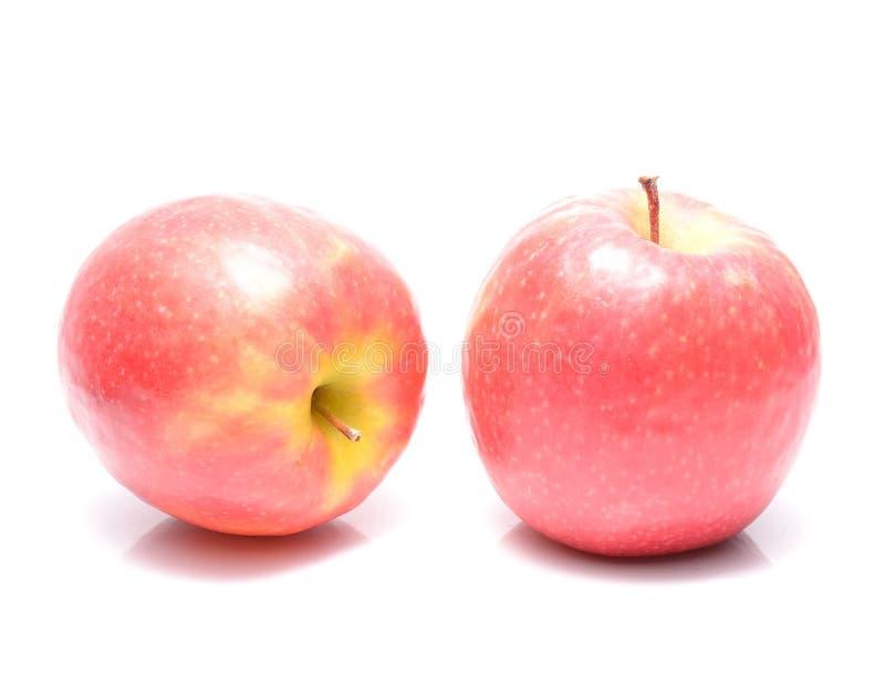 Pommes de dame rose photographie stock