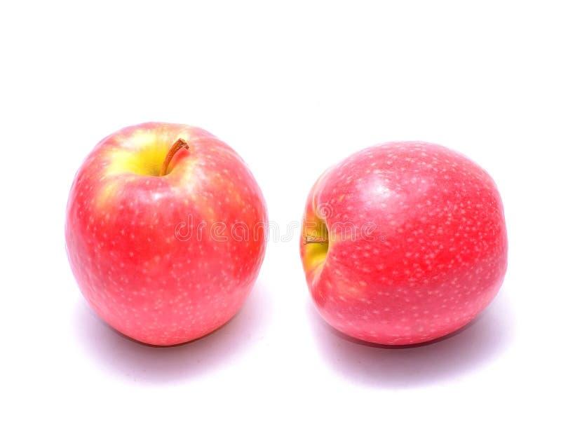 Pommes de dame rose image libre de droits