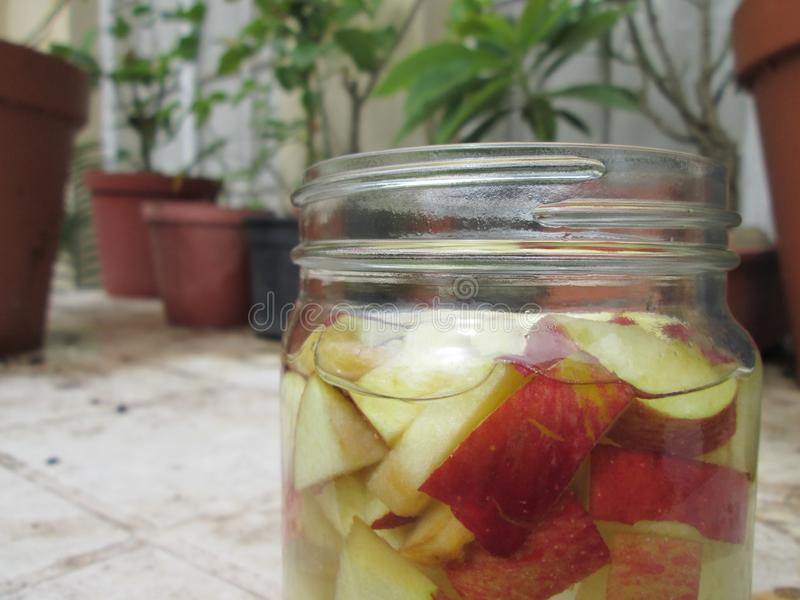Pommes de fermentation pour le vinaigre de cidre photographie stock