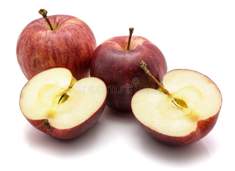 Pommes de gala d'isolement sur le fond blanc photographie stock libre de droits