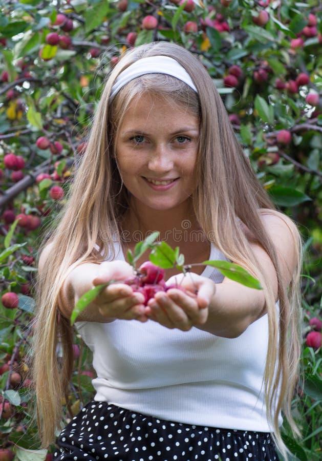 Pommes de offre de fille attirante dans les mains et le sourire photos stock