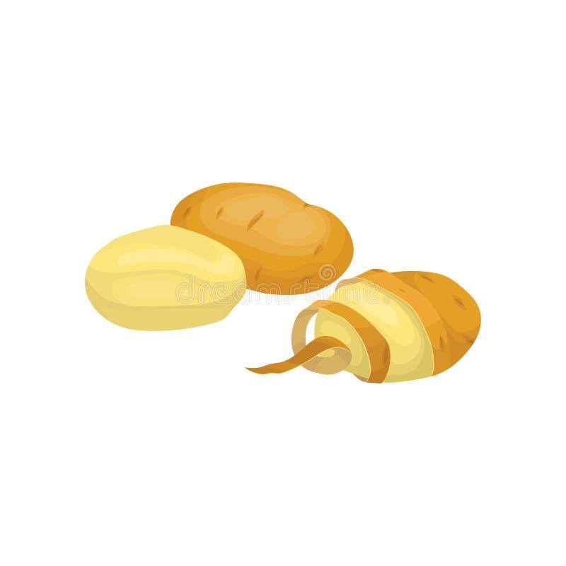 Pommes de terre épluchées et non épluchées crues mûres nourriture fraîche de vegetable Produit de la ferme organique Nourriture n illustration de vecteur