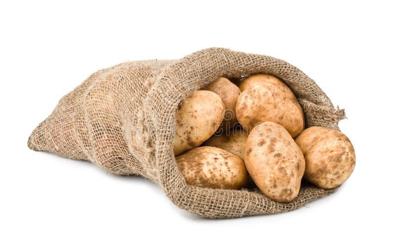 Pommes de terre crues de moisson dans le sac à toile de jute photographie stock libre de droits