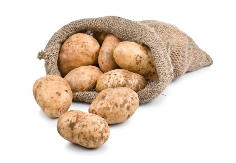 Pommes de terre crues de moisson dans le sac à toile de jute images stock