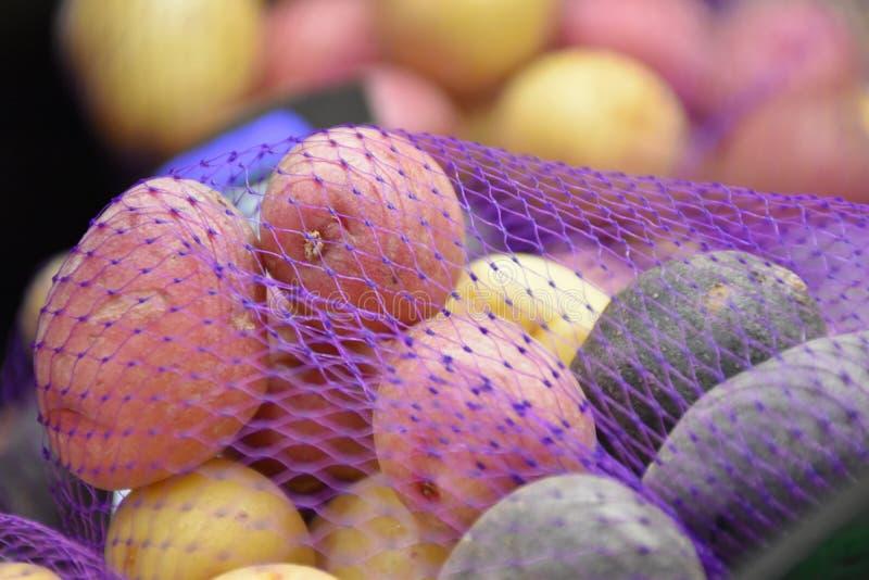 Pommes de terre d'arc-en-ciel image libre de droits