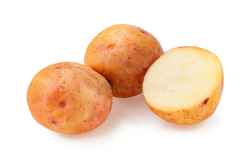 Pommes de terre d'isolement Potatoe entier et coupe d'isolement sur le fond blanc images libres de droits