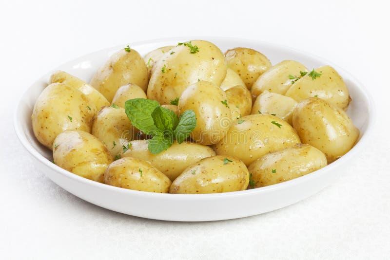 Pommes de terre de primeurs avec le persil et la menthe de beurre photo stock