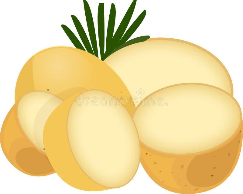 Pommes de terre de primeurs avec Rosmary illustration libre de droits