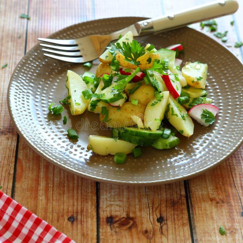 Pommes de terre de primeurs dans une salade avec le radis image libre de droits