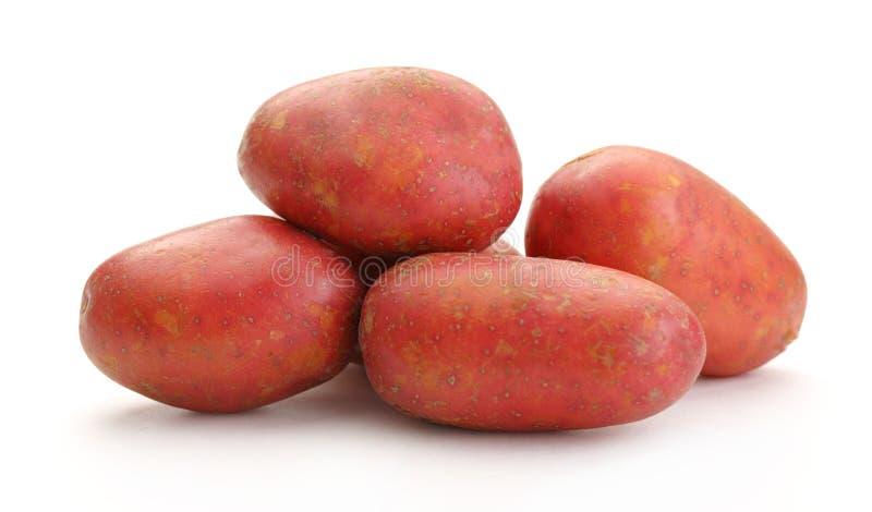 Download Pommes De Terre Entières Fraîches Image stock - Image du nature, ingrédient: 76076083
