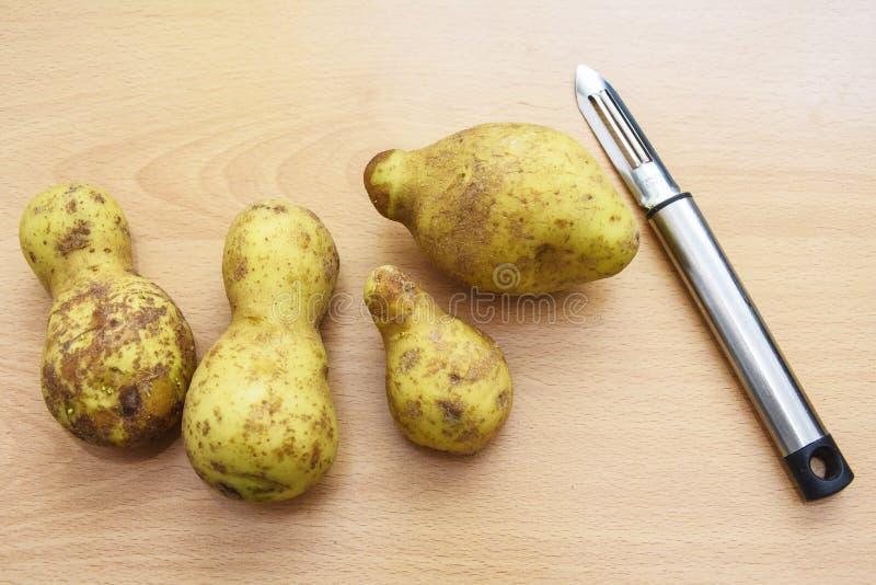 Pommes de terre formées impaires avec l'éplucheuse de pomme de terre images libres de droits