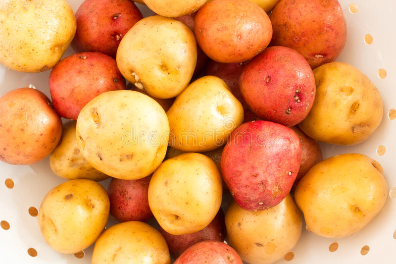 Pommes de terre lavées de chéri dans la passoire blanche photographie stock libre de droits