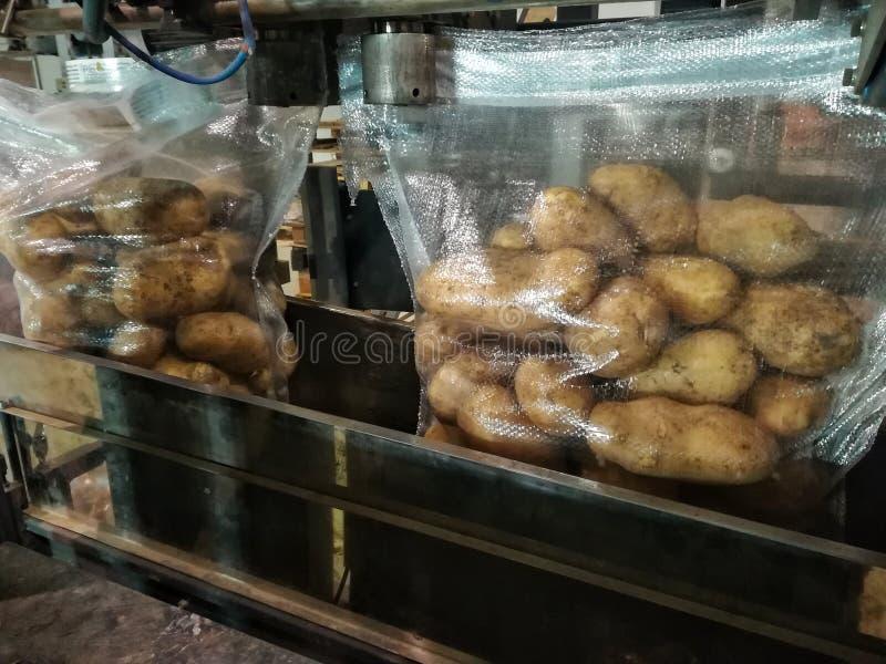 Pommes de terre mises en sac de emballage photo stock