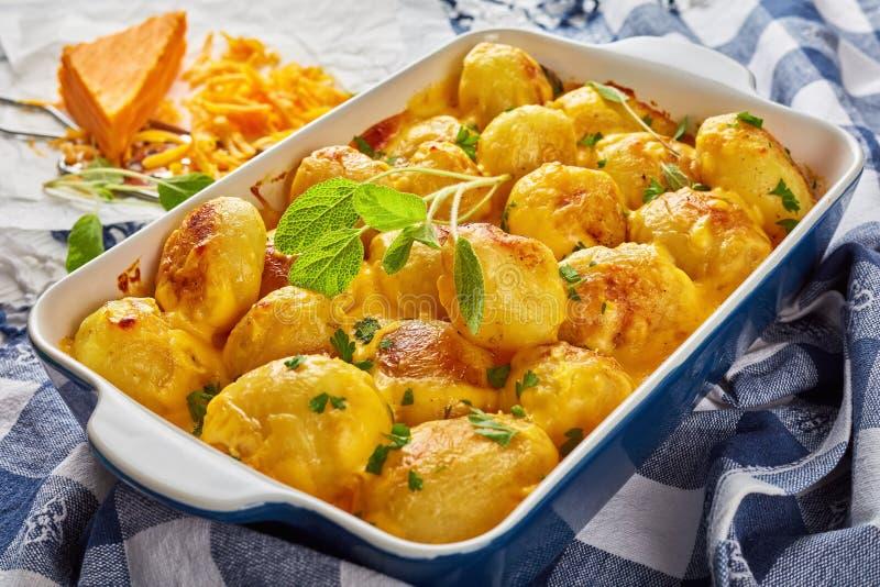 Pommes de terre de primeurs cuites au four avec du fromage de cheddar photographie stock