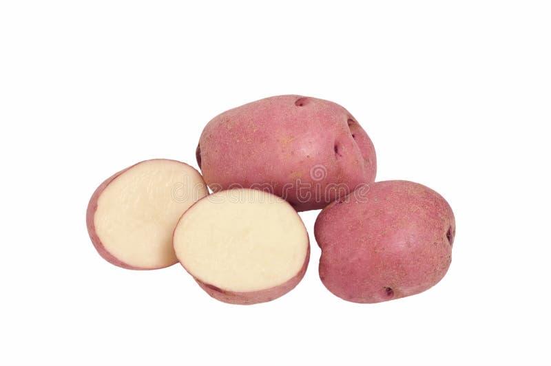 Pommes de terre rouges de Pontiac photos stock