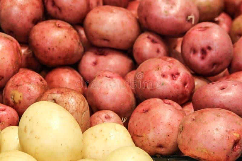 Pommes de terre rouges et blanches sur le marché images libres de droits