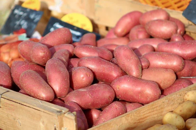 Pommes de terre rouges organiques dans un coffre à un marché de fermiers photos stock