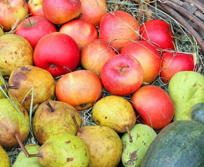 Pommes et poires dans le panier photo stock