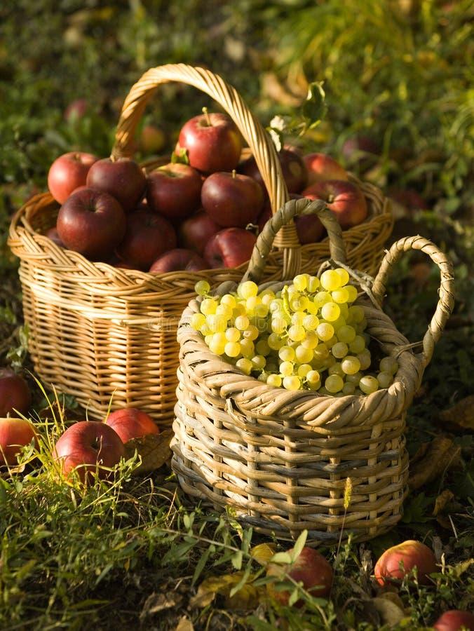 Pommes et raisins rouges photographie stock libre de droits