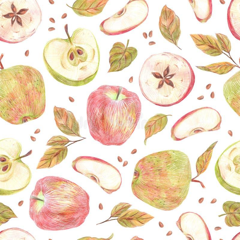 Pommes, feuilles et graines peintes avec les crayons colorés d'isolement sur un fond blanc Configuration sans joint de nourriture illustration de vecteur