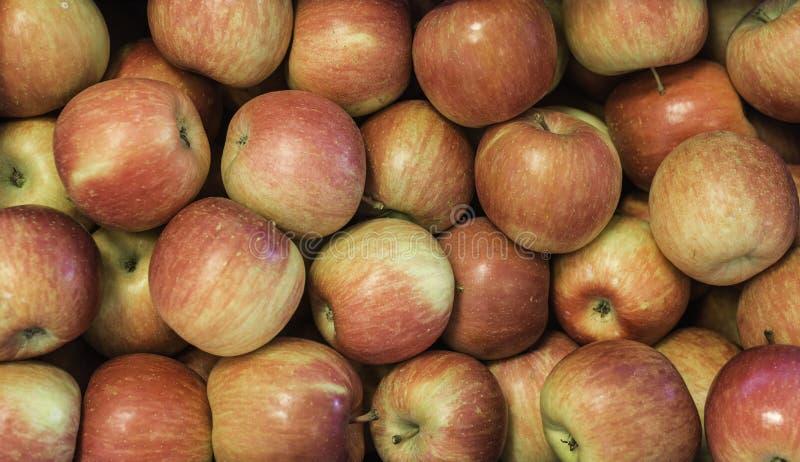 Pommes fraîches Apple approprié aux gâteaux photos libres de droits