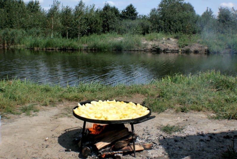 Pommes frites sur le feu photographie stock libre de droits