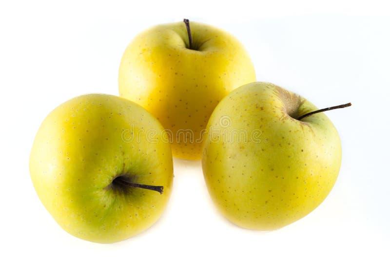 Pommes golden delicious d'isolement sur le fond blanc images libres de droits