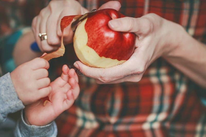 Pommes juteuses rouges dans des mains photo stock