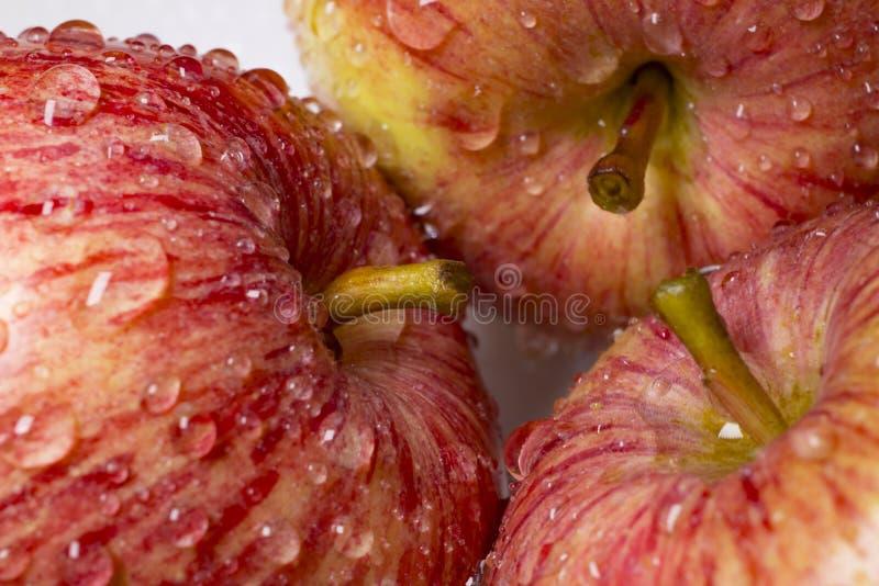 Pommes juteuses rouges dans les gouttes de l'eau, plan rapproché Macro images libres de droits