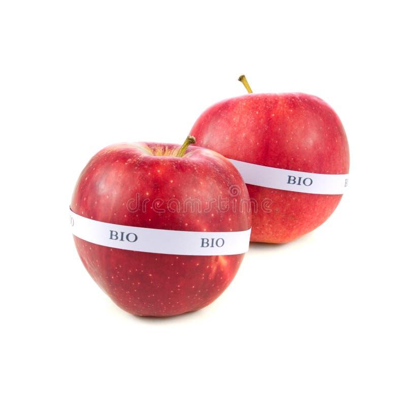 Pommes organiques photo libre de droits