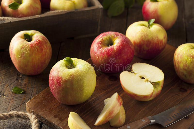 Pommes organiques crues de Honeycrisp photos stock