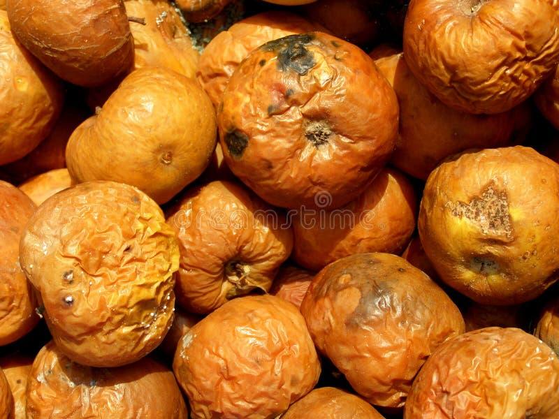 Pommes putréfiées photo libre de droits