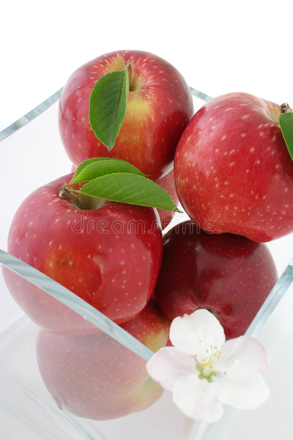 Pommes rouges images stock