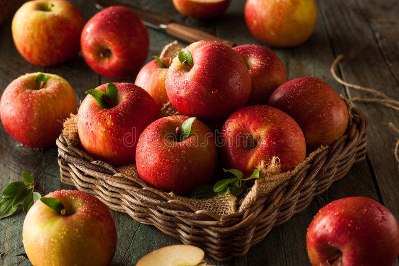 Pommes rouges crues de Fuji image stock