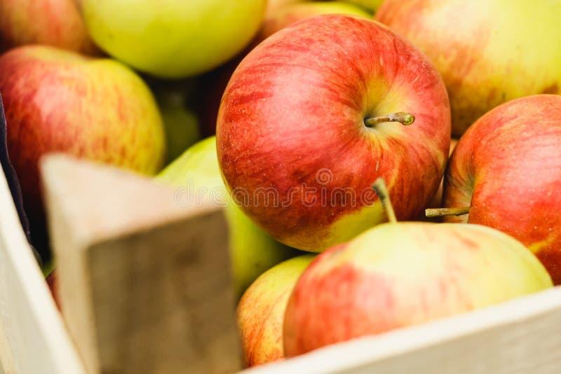 Pommes rouges dans le panier photographie stock libre de droits
