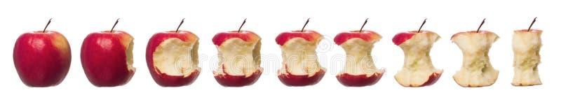Pommes rouges en cours images stock