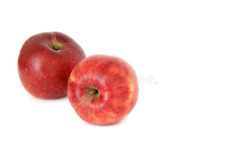 Pommes rouges sur le fond blanc photo stock
