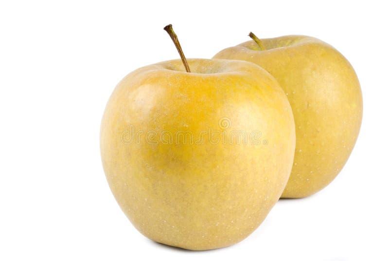 Pommes rousses d'isolement sur le blanc photographie stock libre de droits