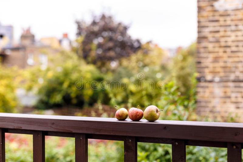 Pommes sur la balustrade en bois dehors photos libres de droits