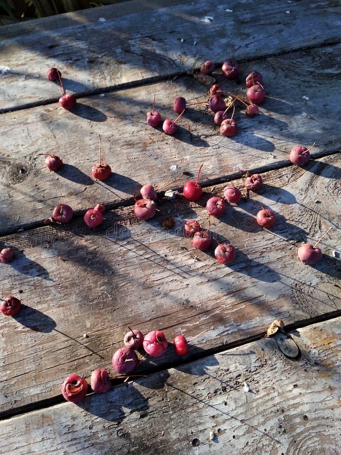 Pommes tombées images libres de droits