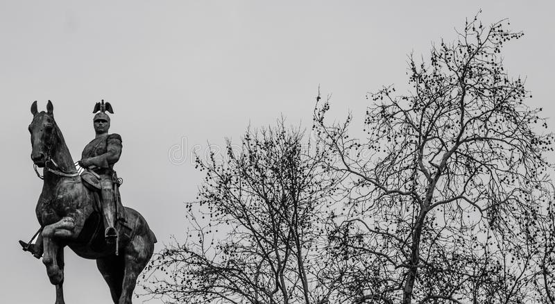 Pomnikowy koński reiter zdjęcia royalty free